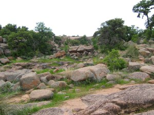 Enchanted Rock 1