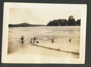 Group Swimming in Pedernales