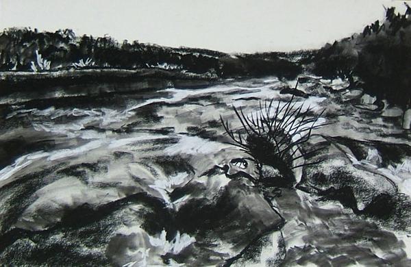 drawing of barton creek in austin, tx by Lynn Bridge
