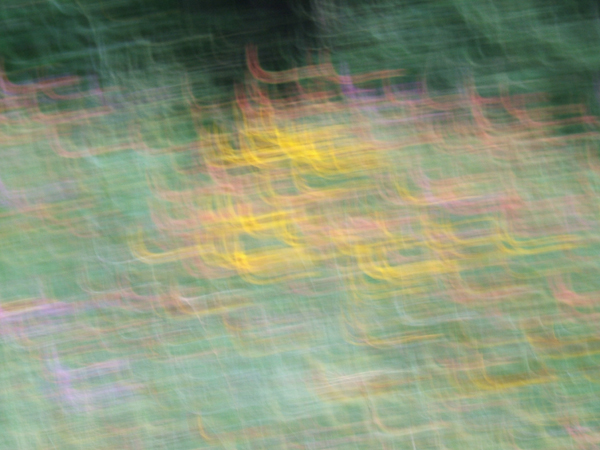 abstract photo in greens, yellows, pinks, lavendars