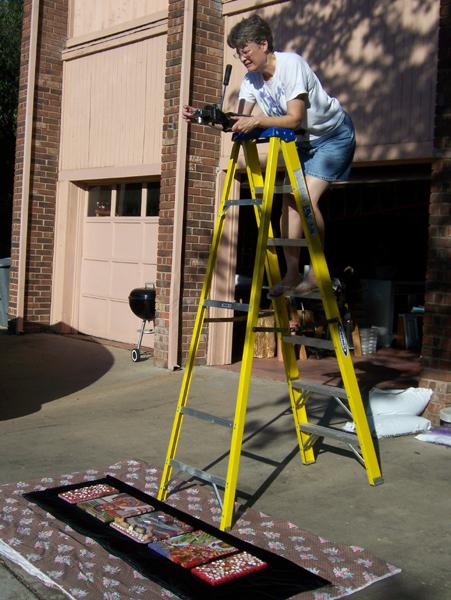 Lynn Bridge photographing art from a ladder